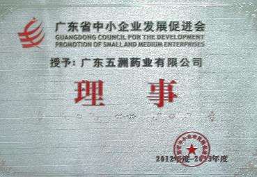 广东省中小企业发展促进会理事